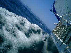 boat race optimism